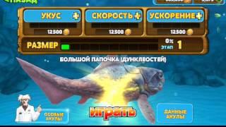 Hungry shark evolutlon (обзор игры)