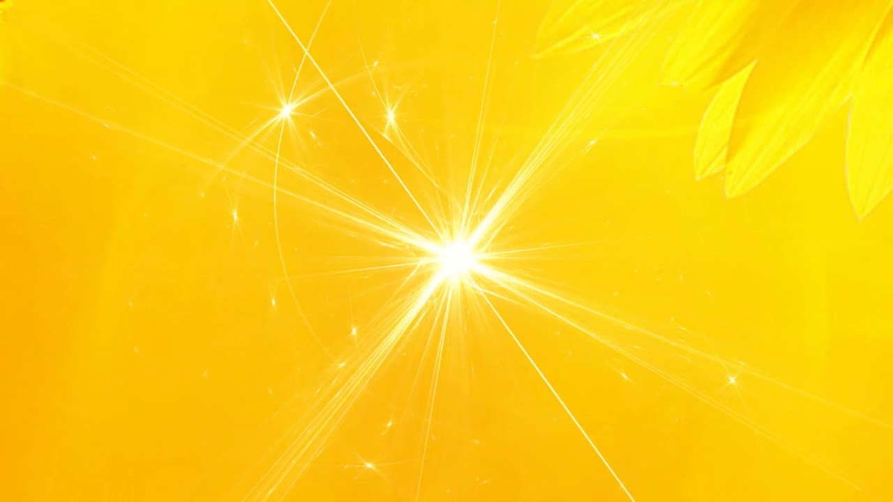 Hd Yellow Wedding Video Background 1080p Free Download Dmx Hd Bg