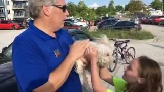 熱がこもった車内に犬が閉じ込められていた!通りがかりの男性が大きな石で窓をカチ割り犬を救出。