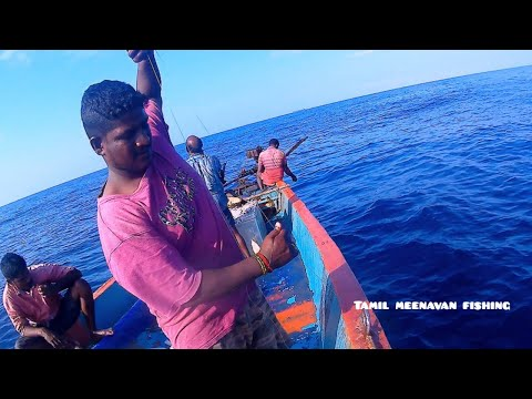 Deep Sea Fishing Catching Lot Of Red Snapper Fish