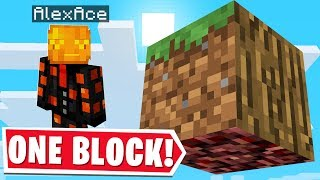 ALL OF MINECRAFT BUT IN ONE BLOCK..