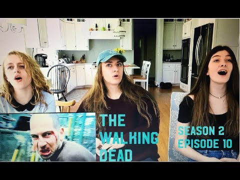 The Walking Dead  2x10 18 Miles Out  Reaction