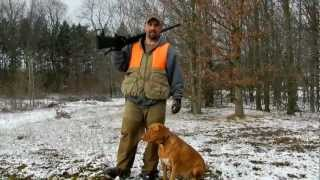 2011 Michigan Pointing Labs Remi On A Chucker Hunt