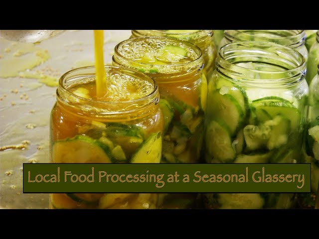 It All Began With Pickles- Mobile Minute