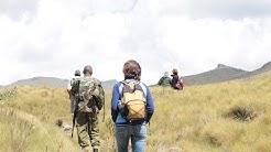 Hike Le Satima 4001m (13126 feet ), Aberdare National Park, Kenya