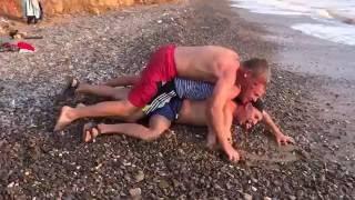 видео большая черепаха ползет к морю