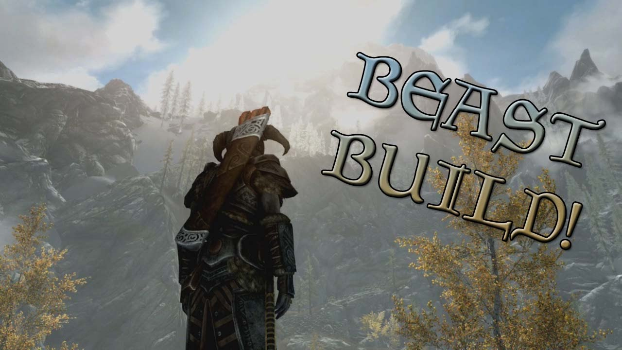 Skyrim Special Edition - MY MOST RECOMMENDED CHARACTER BUILD!