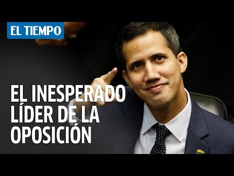 Juan Guaidó, ¿la nueva cabeza de la oposición en Venezuela?