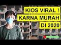 Viral Karna Murah Harga Burung Terkini Di Abadi Bird Palmerah Ada Kacer Wambi Mini Srdc Dll  Mp3 - Mp4 Download