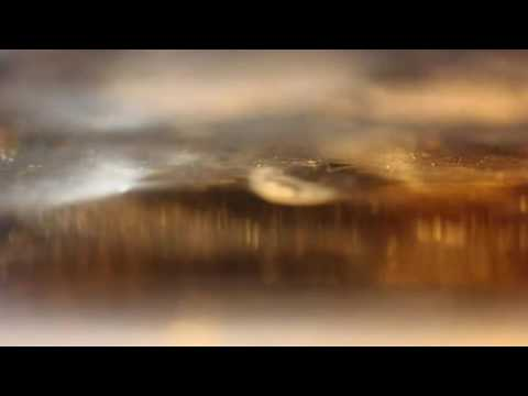 Abstract Landscape Photography by Vineta Cook