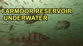 Farmoor Reservoir Underwater