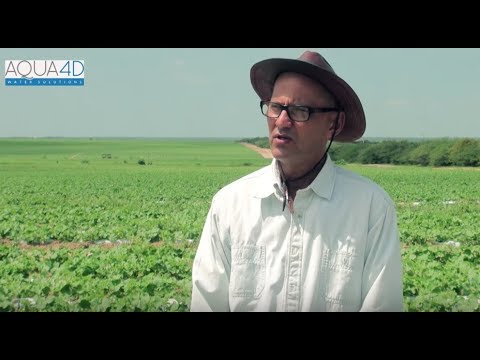Interview Paulo Dantas (Agricola Famosa)