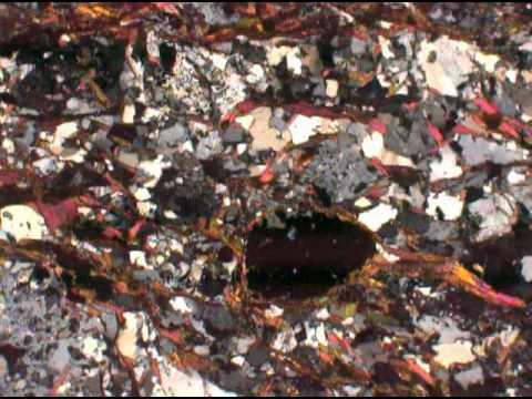 Garnet biotite muscovite schist (XP)