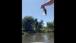 Walnut Creek, Omaha NE bass