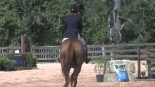Equestrian 101: Hunt Seat