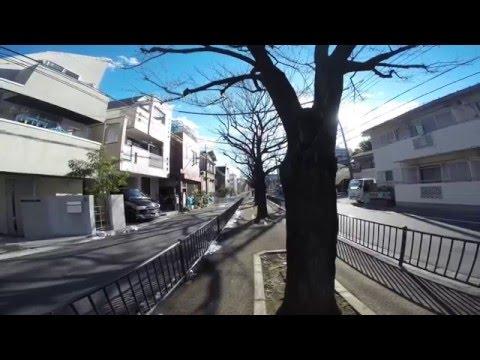 TOKYO,TOKYO,TOKYO !  (1481) Maeno-cho [Itabashi-ku] vol.1 ~前野町(板橋区)を歩いてみました!(1)