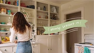 settling in: a weekly vlog ☁ ☼ thumbnail