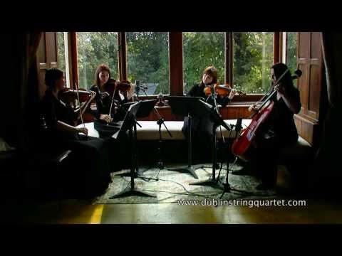 Dublin String Quartet: Air on a G String