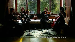 Dublin String Quartet: Air on a G String