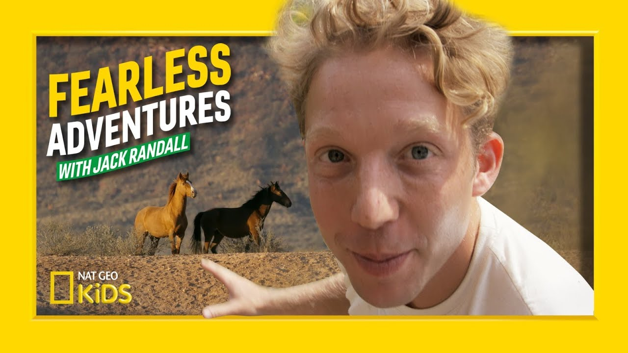 Rescuing Wild Australian Horses | Fearless Adventures with Jack Randall