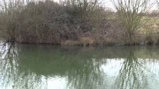 NEW CLAYGATE LAKES, MARDEN, NEAR PADDOCK WOOD, KENT