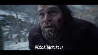 アカデミー賞®主演男優賞、監督賞、撮影賞受賞》 主演:レオナルド・デ...