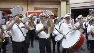 Processione Maria SS. del Lume 2014 - Omaggio ai Vigili del Fuoco