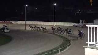Vidéo de la course PMU PREMI BELUTINE