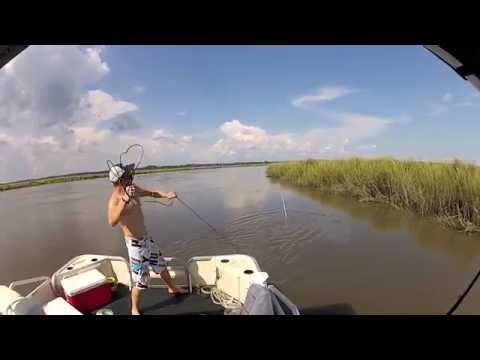 Shrimping South Carolina 2014
