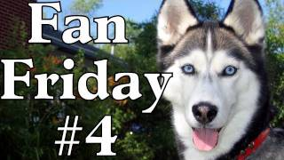 Fan Friday #4 - When are they Vocal? Where do they Stay while Your Gone? & Other Questions!
