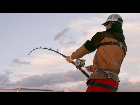 Epic Bull Shark Fight on Light Tackle - 4K