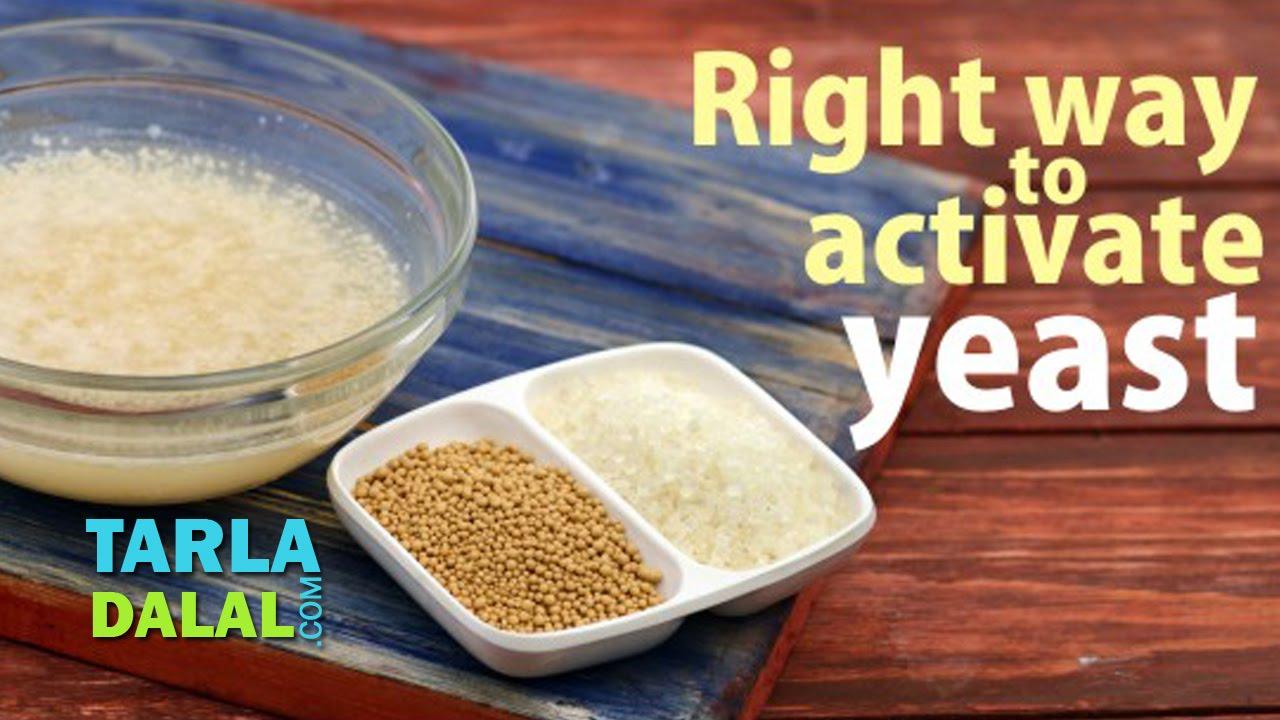 Dry yeast vs. Liquid yeast | homebrewing learn center.