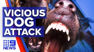 Beloved pet greyhound viciously attacked by other dog I 9News Perth