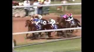 MISTER FRISKY - Kentucky Derby 1990