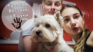 КУПАЕМ ВЕСТИКА В 4 РУКИ/ ТАМАРА ГРИН