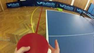 Play Table Tennis with Timo Boll