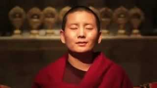 Chu Dai Bi Phan Ngu