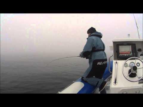 Peche du lieu , technique de l ascenseur . pêche en mer