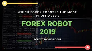 Wikitrader Homepage Wiki Trader Website Home Page Review Get Best Automated Forex Trading Www Forexprofiter To Learn More About From