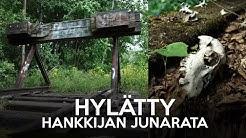 Hylätty Hankkijan junarata + ELÄIMEN KALLO 💀