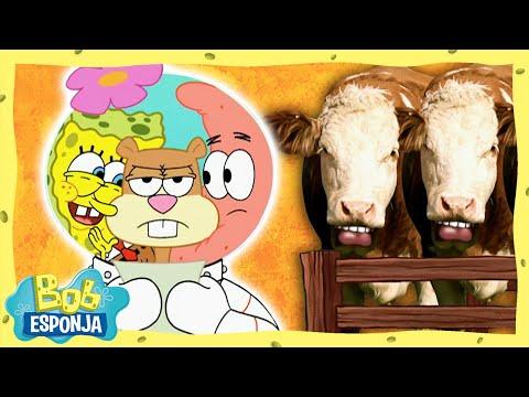 ¡El Fabuloso Rodeo De Texas!   Bob Esponja en Español