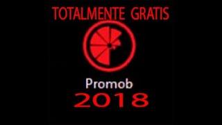 PROMOB PLUS VERSÃO 5.38.10.44 / 2018 - DOWNLOAD E INSTALAÇÃO GRATIS