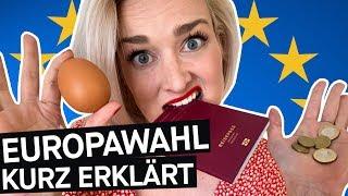 Selbstversuch: Was bringt mir die EU? Europawahl kurz erklärt + Luisa Neubauer || PULS Reportage