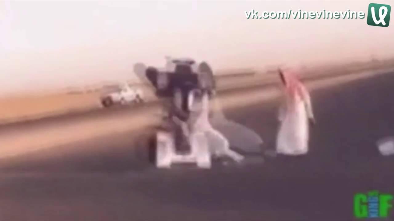 забавы богатых арабов видео