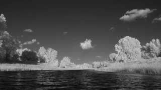 Sortie aux iles de Boucherville