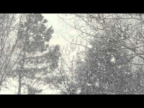 A Few Snow Pics