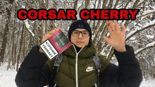 ОБЗОР НА СИГАРИЛЛЫ CORSAR CHERRY КОРСАР С ВИШНЕЙ