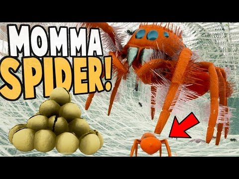 NEW JUMPING SPIDER LIFE CYCLE! Living Inside A Spider Nest! - Drunk On Nectar Gameplay