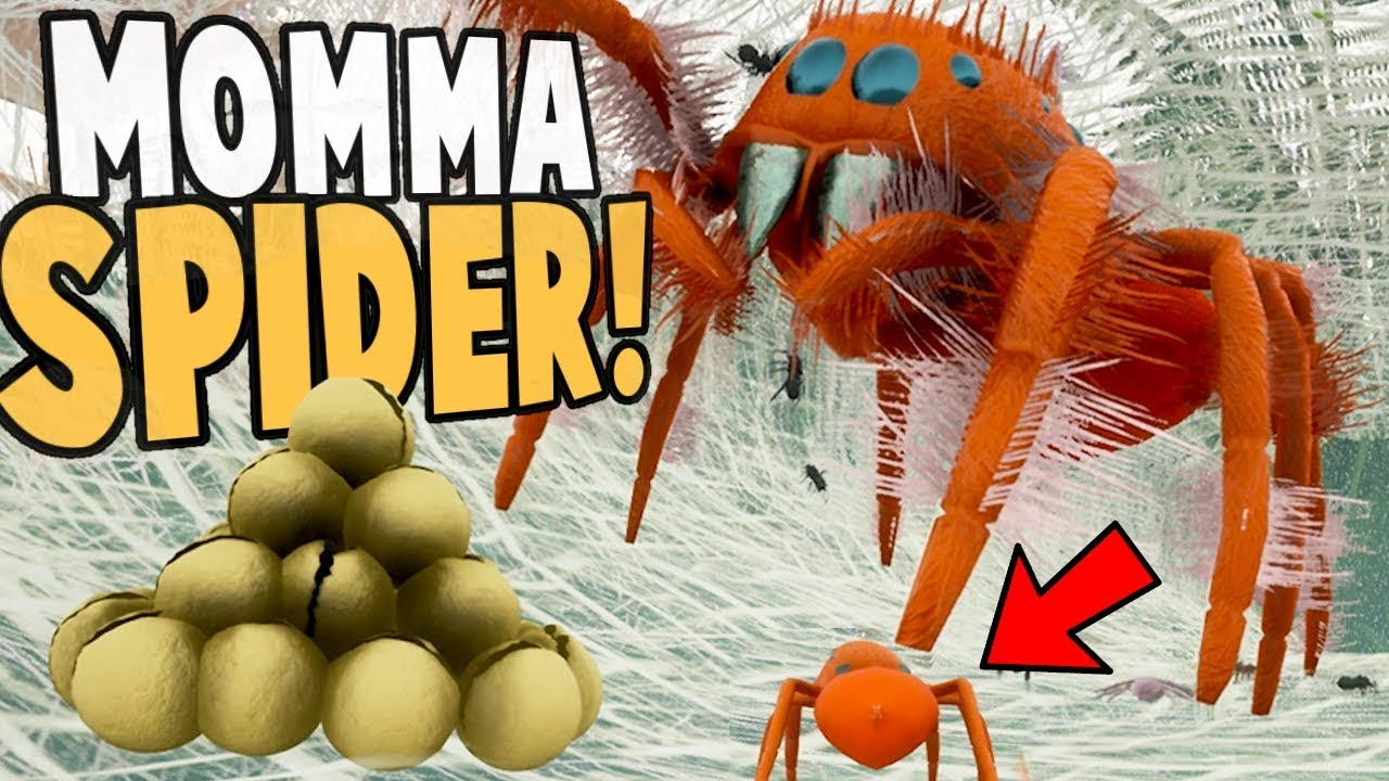 NEW JUMPING SPIDER LIFE CYCLE! Living Inside A Spider Nest! – Drunk On Nectar Gameplay