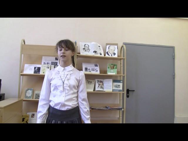 Изображение предпросмотра прочтения – ЧеркасскаяАнастасия читает произведение «Зеркало и обезьяна» И.А.Крылова